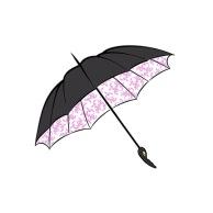 Umbrella_Concept